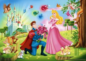 fondos de princesas para photoshop
