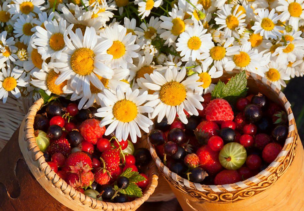 Fondos depantalladefrutas y flores