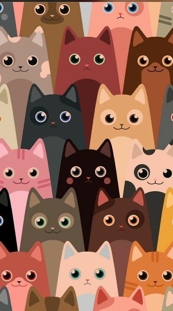 Fondo de pantalla para celular de gatos