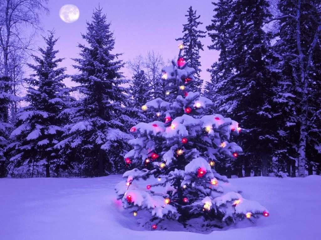 descargar gratis fondos de pantalla animados de navidad