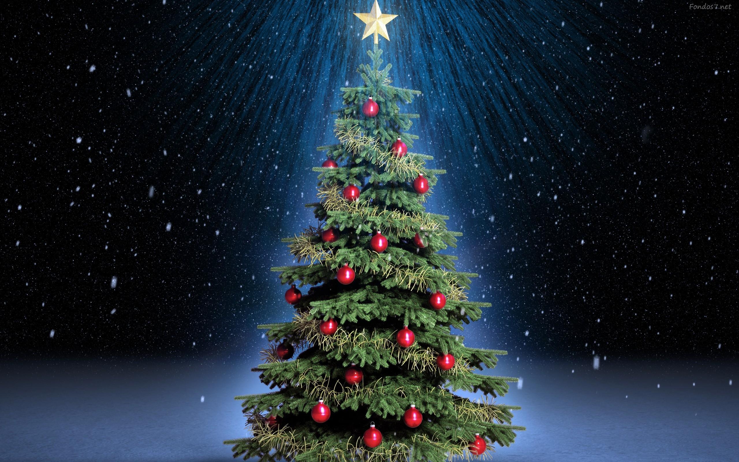 Fondos navidad 2012 fondos de pantalla - Fotos arboles navidad ...