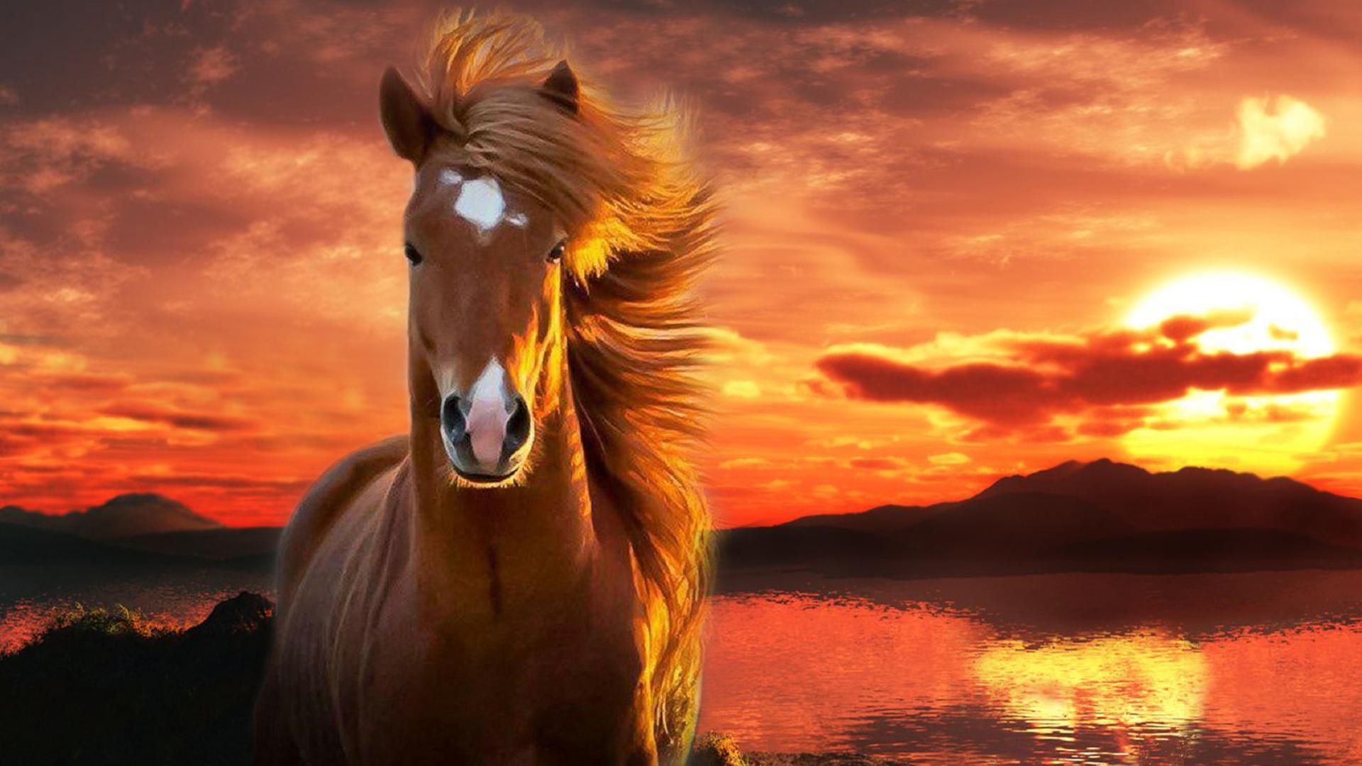 imagen de Paisaje y caballo