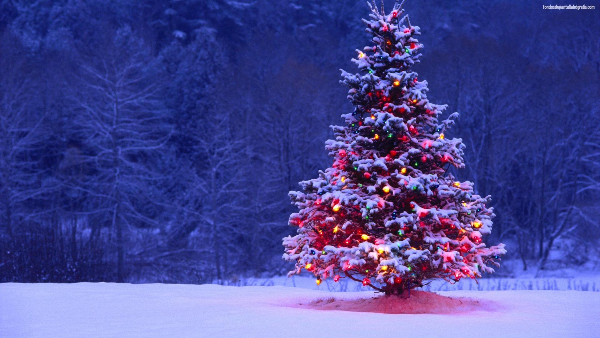 Cincuenta fondos de pantallas de navidad y año nuevo para tu.
