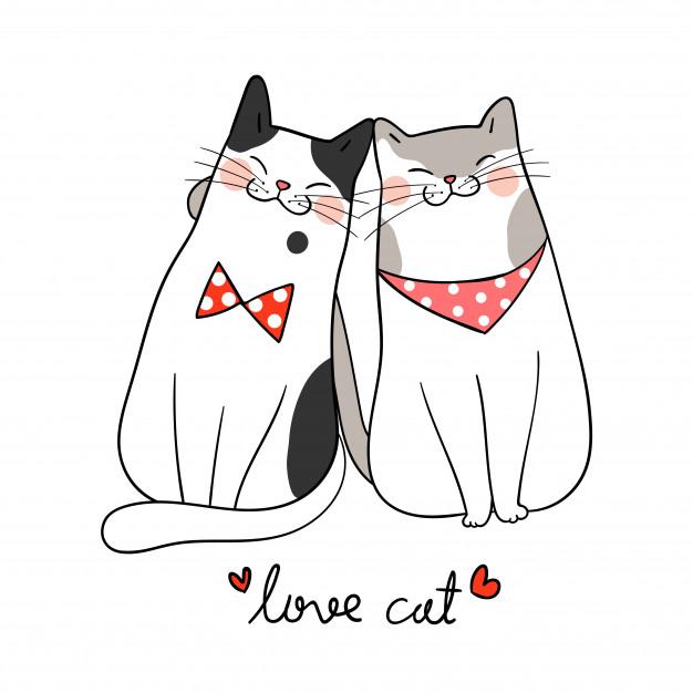 Love cat, amo a los gatos