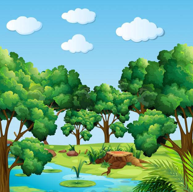 Escena de un bosque con rio