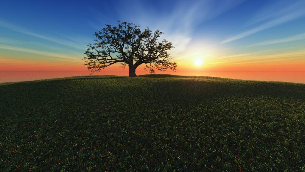 fondos de pantalla gratis hd paisajes