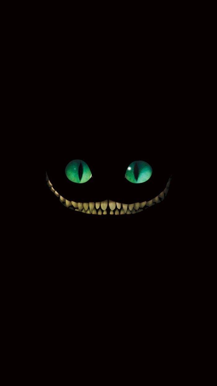 Wallpaper Gato en la oscuridad