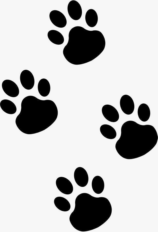 huellitas de perro png