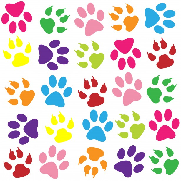 imagenes de huellas de perro de colores