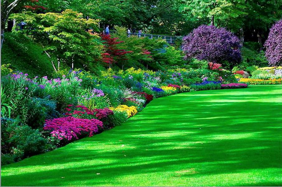 100 Mejores Fondos De Jardines Fondos De Pantalla Cascada, cisnes, flores todos los fotomontajes gratis online y marcos para fotos. fondos de pantalla