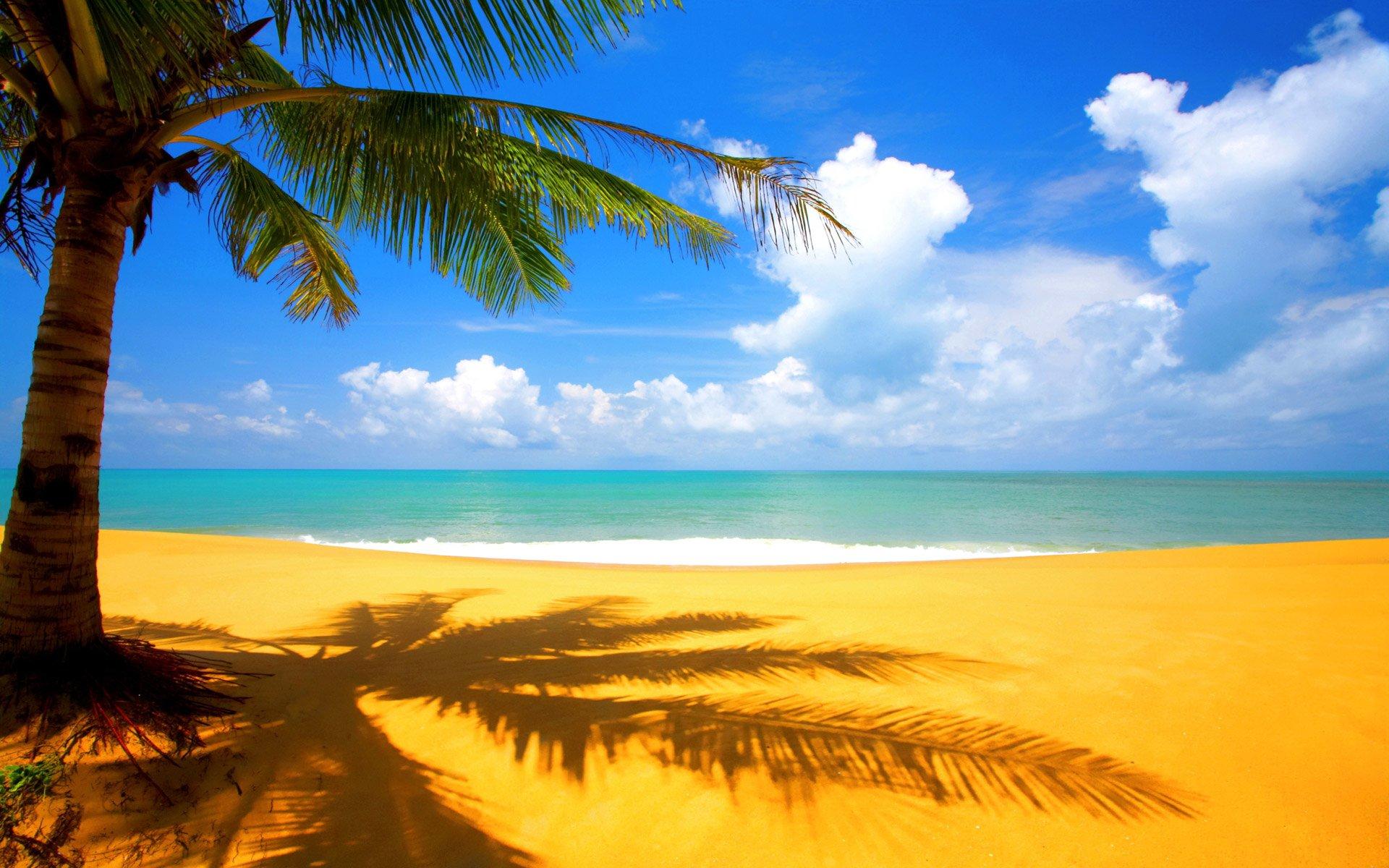 Playa y Mar Verano
