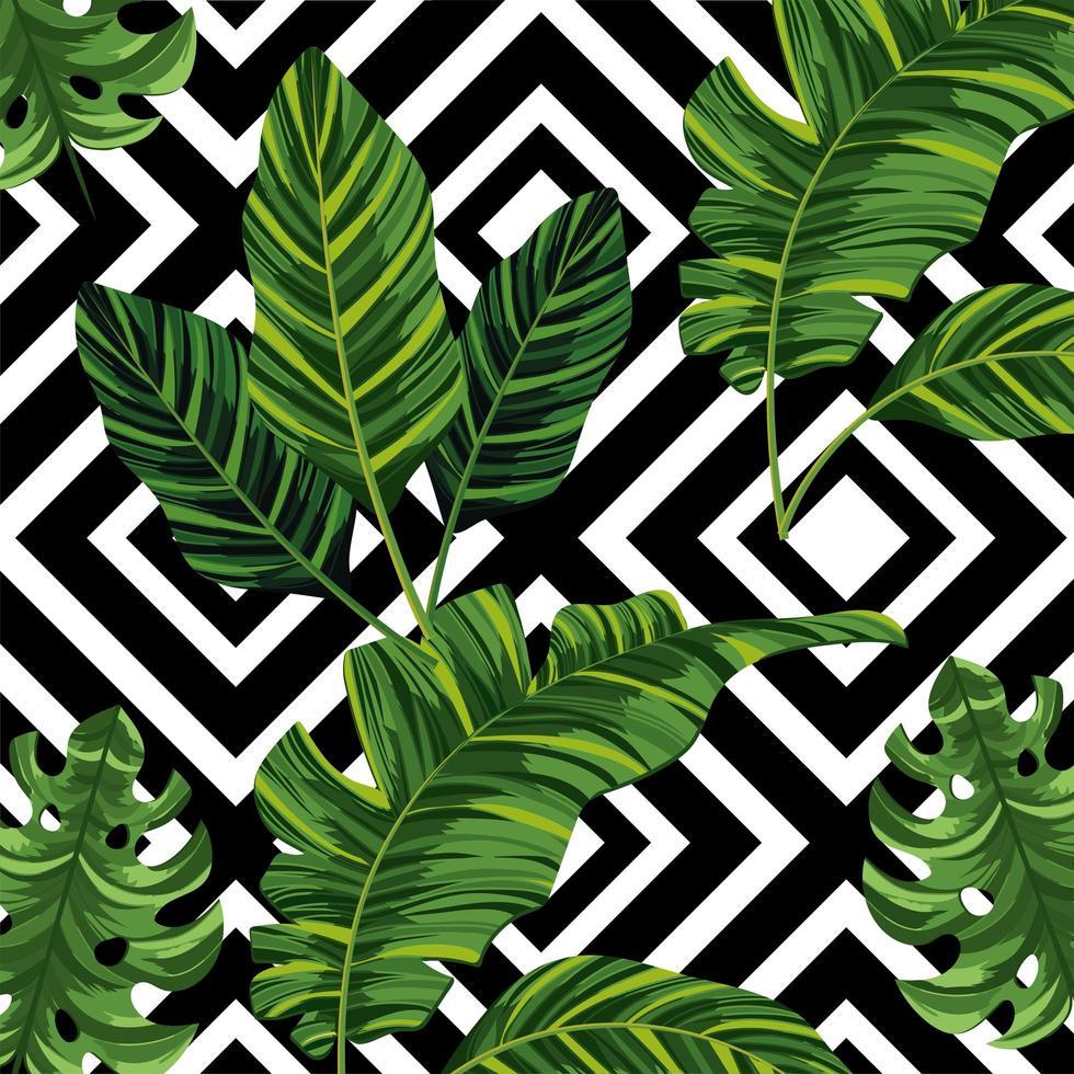 Wallpaper hojas tropicales
