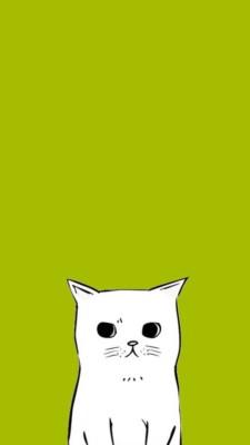 Fondo verde con gato Tumbrl