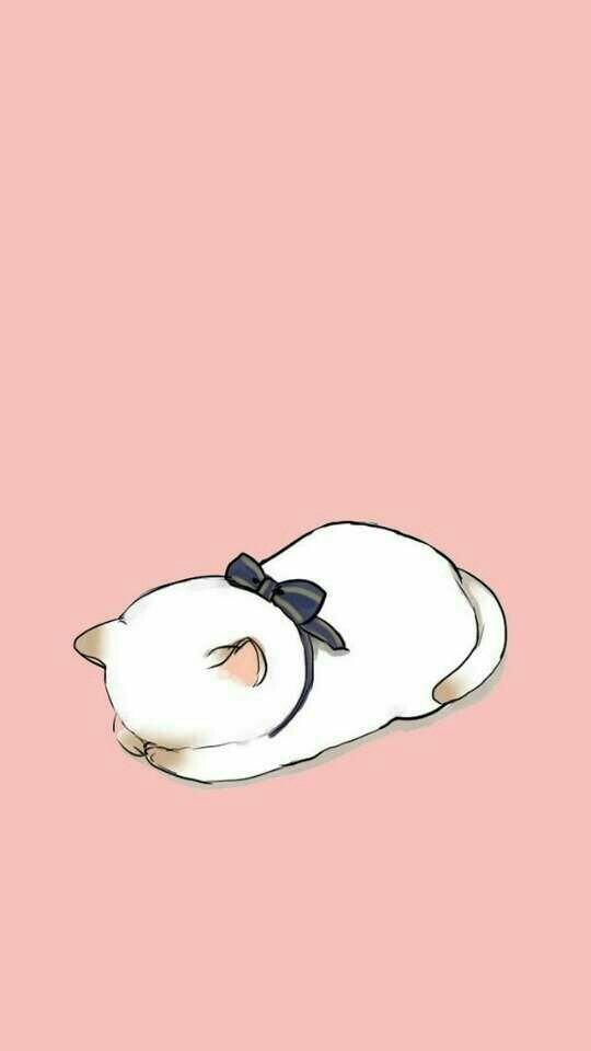 Fondo rosa con gatita durmiendo