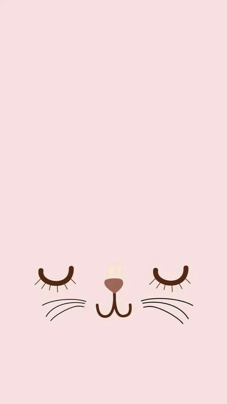Fondo rosa con gato Tumbrl