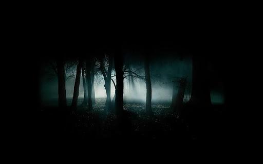 Fondo de un bosque oscuro
