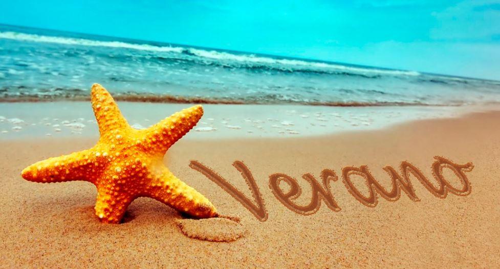 Estrella de mar en el verano