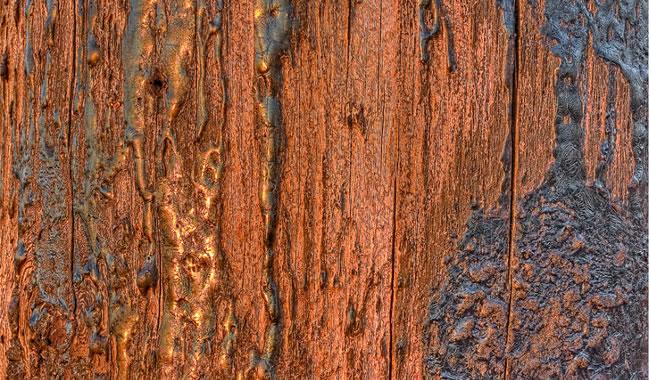 textura madera rustica hd