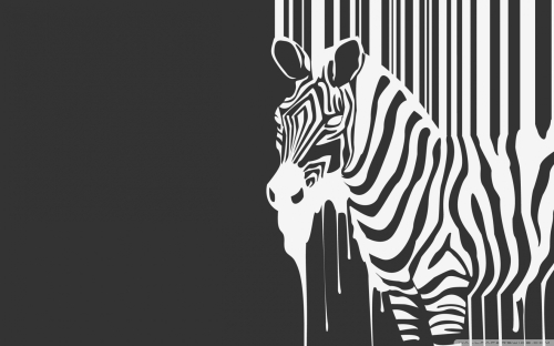 zebra-melting
