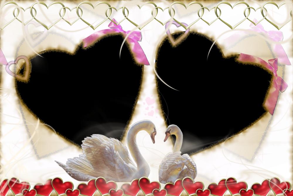 Fondos de pantalla de el día de los enamorados