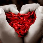 Imágenes de san valentin para fondos de pantalla