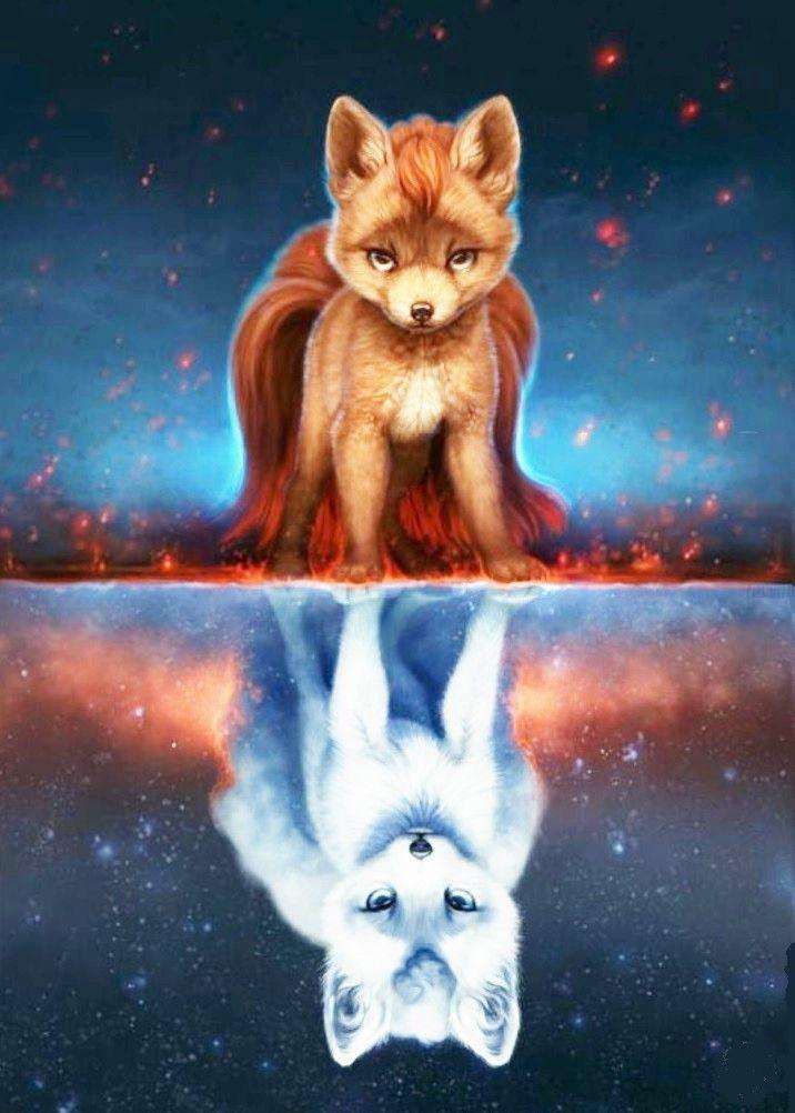 Imagen para celular de zorro en dos partes