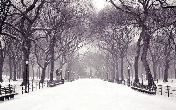 wallpapers invierno hd