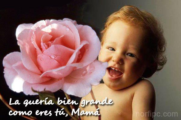 imágenes de madres e hijos para compartir en facebook