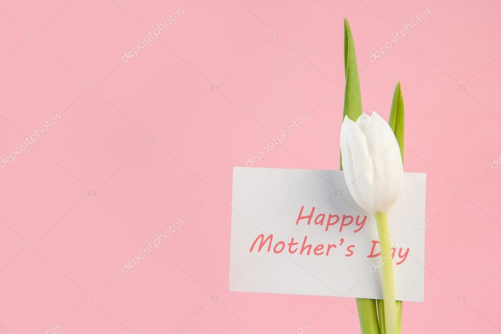 Fondos Para El Dia De La Madre: Fondos Para Dia De Las Madres