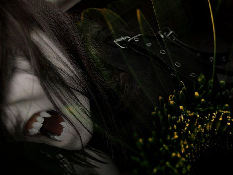 Vampiro Anime