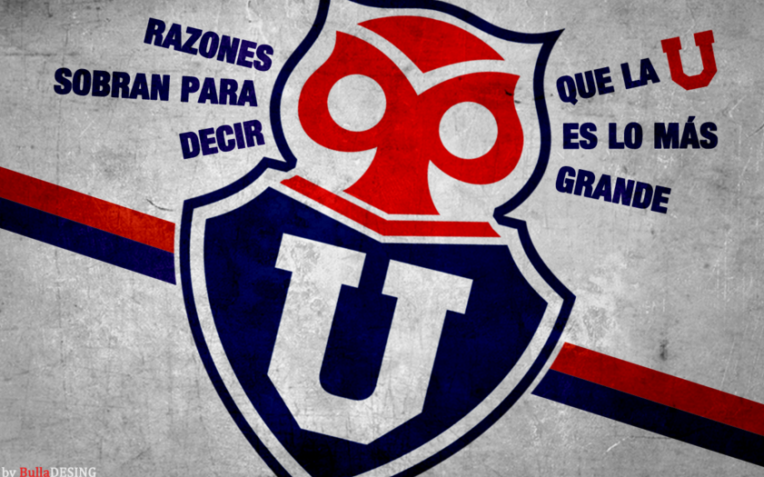 wallpapers u de chile 2013