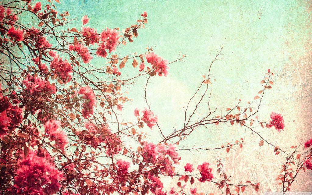 wallpaper vintage flowers pink