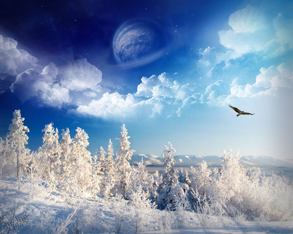 Wallpapers winter