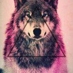 fondos de lobos para celular