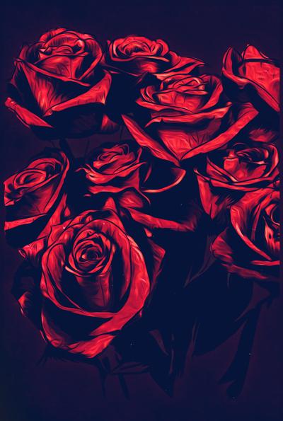 fondos de rosas rojas tumblr