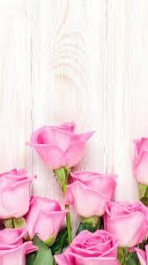 fondos de pantalla de flores de color rosa