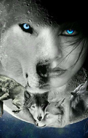 las mejores imagenes de lobos para dibujar