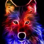 fondos de pantalla animados de lobos
