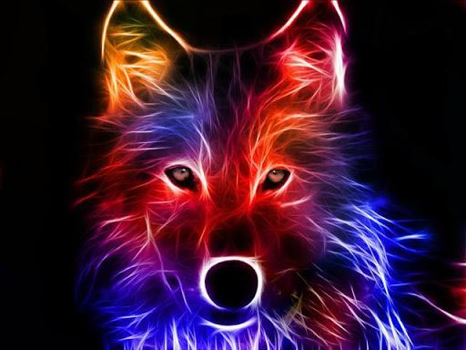 100 fondos de lobos animados fondos de pantalla