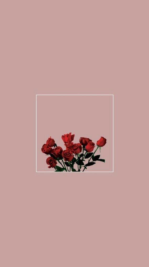 Fondo rosas Vintage