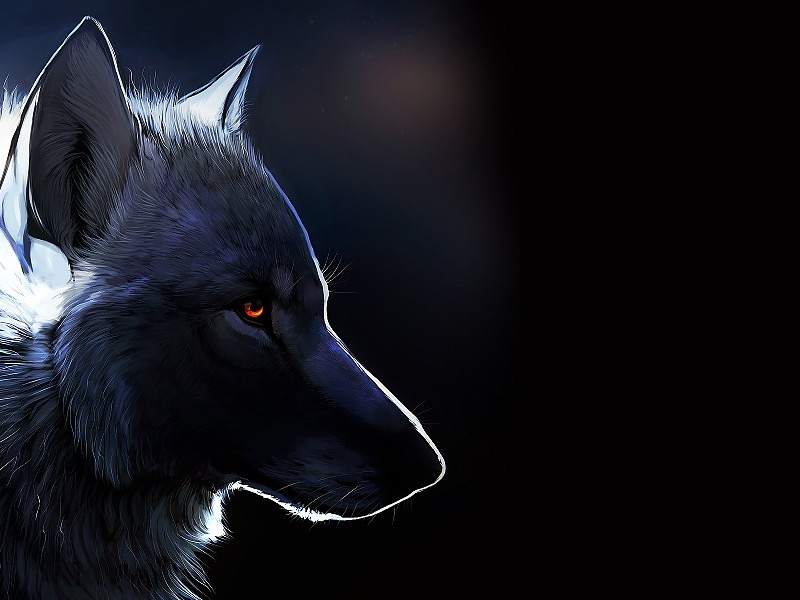 Fondos de pantalla con lobos