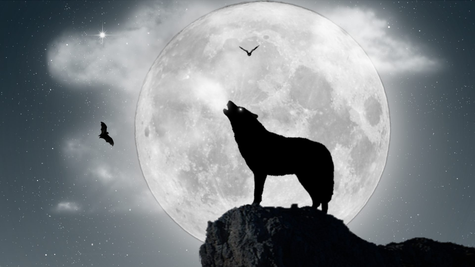 Fondos de pantalla lobos aullando