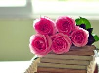 Wallpapers flores rosas