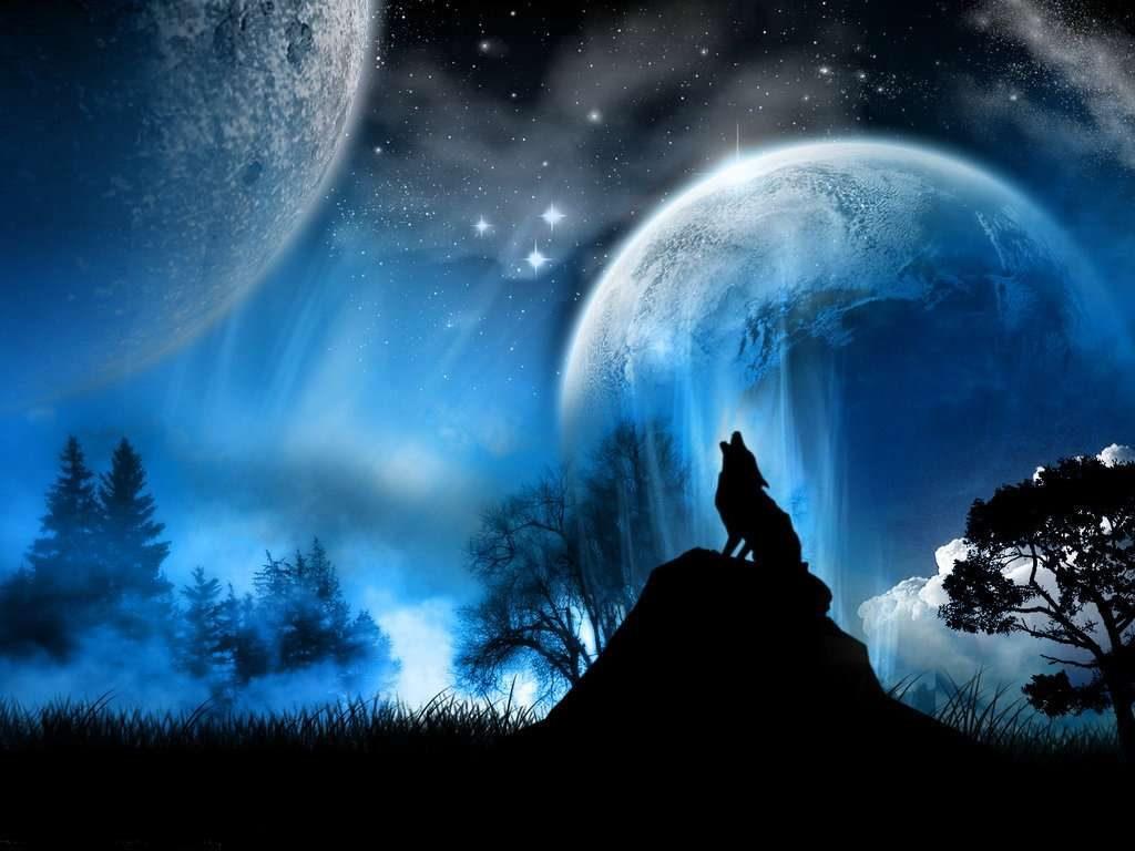 Lobo en la luna