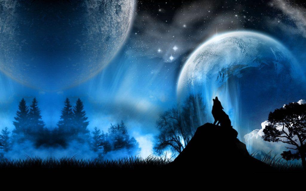 fondos de lobos con movimiento