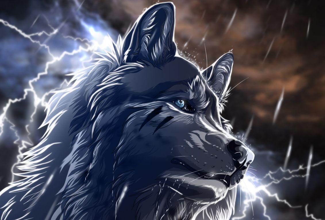 Imagenes De Lobo Para Fondo De Pantalla: Fondos De Pantalla Animados De Lobos