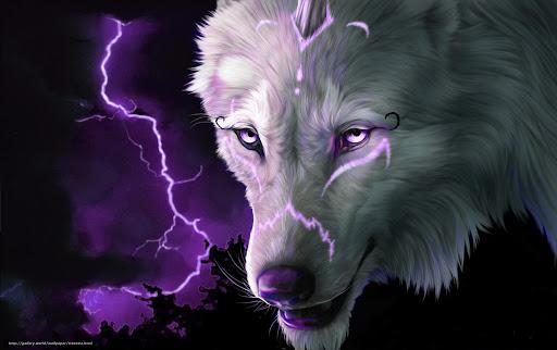 Fondo de pantalla lobo blanco