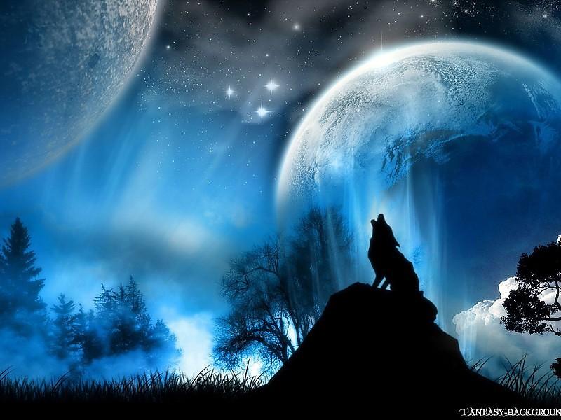 Fondos de pantalla de lobos en 3d