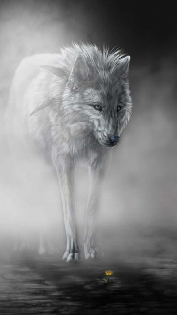 Imágenes de lobos para fondo de pantalla de celular