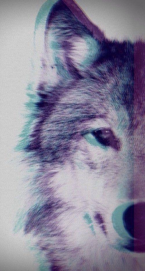 fondos de pantalla para celular de hombres lobo